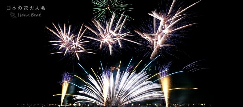 取手市制施行50周年記念 第67回 とりで利根川大花火 2020 茨城 取手